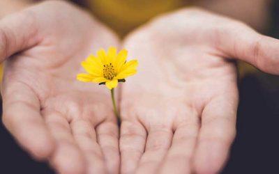 El poder del perdón – Ejercicios que te ayudarán a perdonar