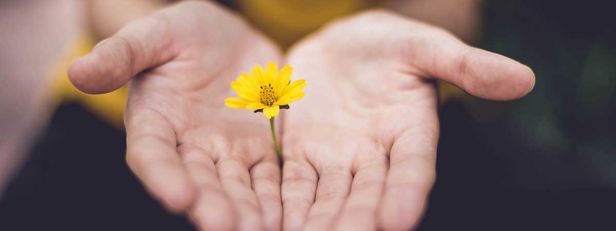 El Poder Del Perdón Ejercicios Que Te Ayudarán A Perdonar