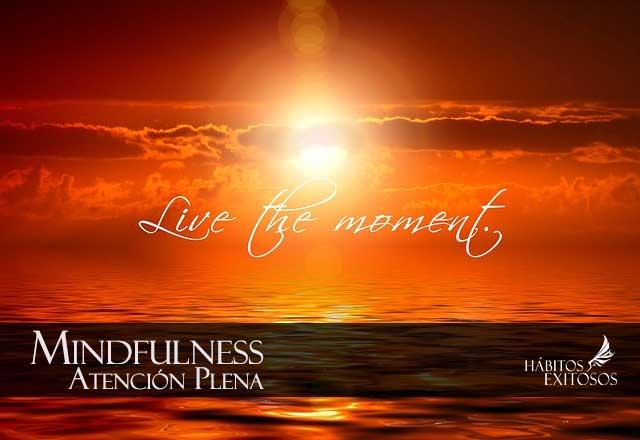Mindfulness - Hbitos exitosos