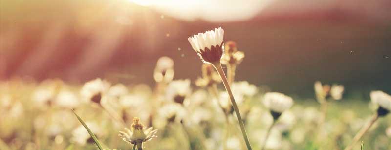 Cómo desarrollar la confianza en ti mismo – Día 4 del reto de la transformación