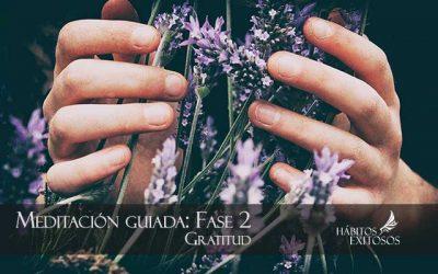 Fase 2 – Meditación guiada de gratitud