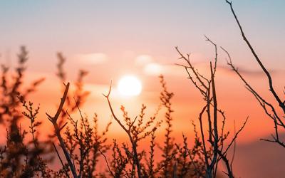 Las 10 mejores afirmaciones para ser feliz y sentirte bien