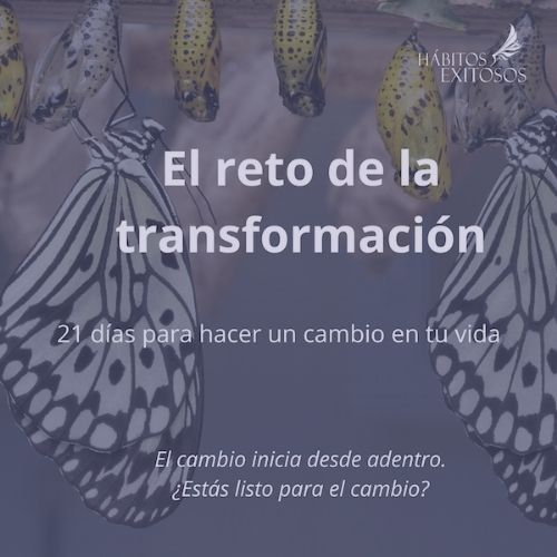 Reto de la Transformación Angie Ramos