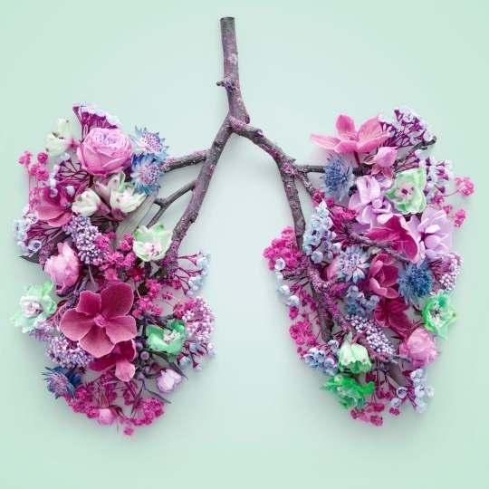 beneficios respiracion - angie ramos